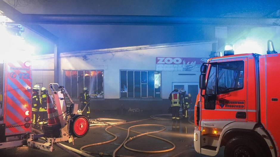Feuerwehrleute löschen den Brand einer Zoohandlung