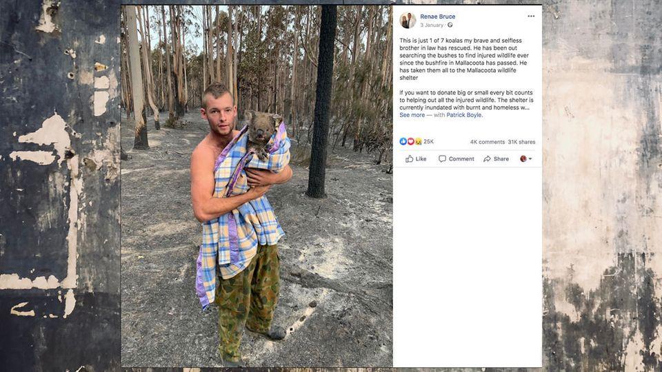 Australien: Patrick Boyle rettet Koalas vor den Buschbränden