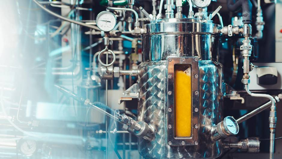 Solar Foods züchtet aus Bakterien, Sonne und Wasser das sogenannte Solein