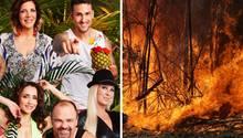 Dschungelcamp 2020: Gaskocher statt Lagerfeuer