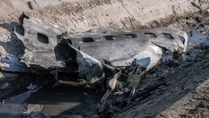 Die ukrainische Maschine ging nach dem Treffer durch die iranische Rakete brennend zu Boden