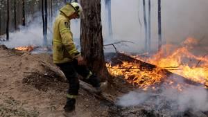 Buschbrand Australien