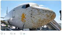 Boeing Flugzeug