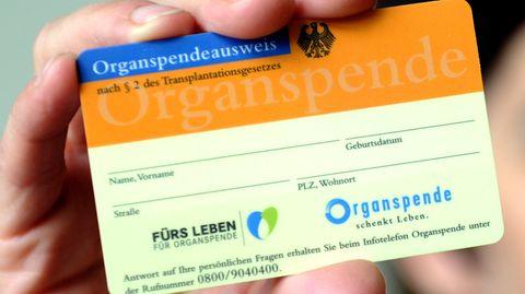 Eine Frau hält einen Organspendeausweis in der Hand