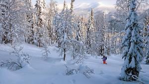 Skitouren in Sibirien