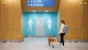 Der finnische Flughafenbetreiber Finavia hat am Airport Helsinki-Vantaa einen Toilettenbereich für Vierbeiner eingeführt