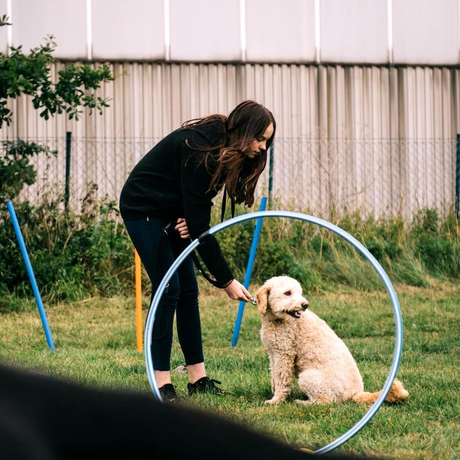 """""""Fundogkids"""": Diese Hundeschule macht aus Kindern und Hunden ein echtes Team. Eltern müssen draußen bleiben!"""