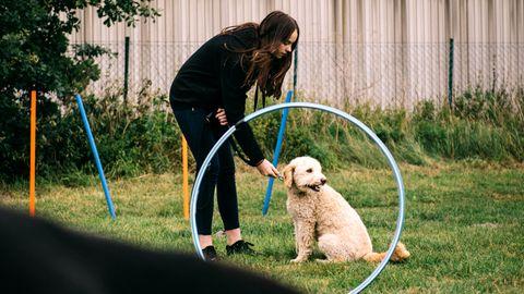 """Die Hundeschule """"Fundogkids"""" macht aus Kids und Hunden echte Teams"""