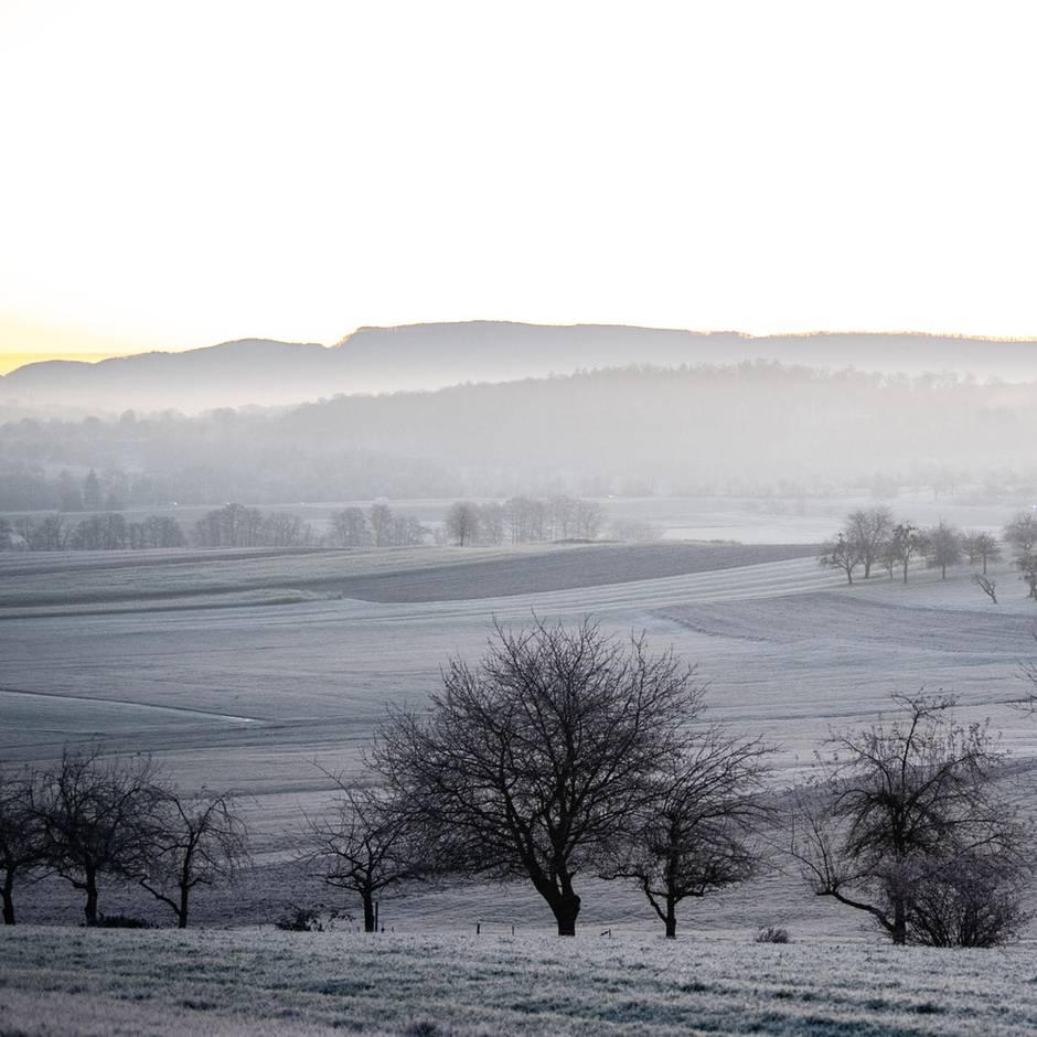Wetter in Deutschland: Am Wochenende wird es winterlich – möglicherweise mit Schneefall