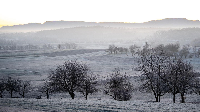 Wetter in Deutschland: Landschaft mit Raureif