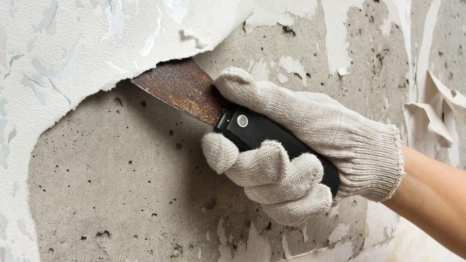 Hilfsmittel und Tipps zum erfolgreichen Tapeten entfernen