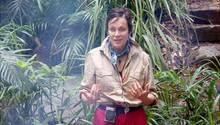 Dschungelcamp: Sonja Kirchberger