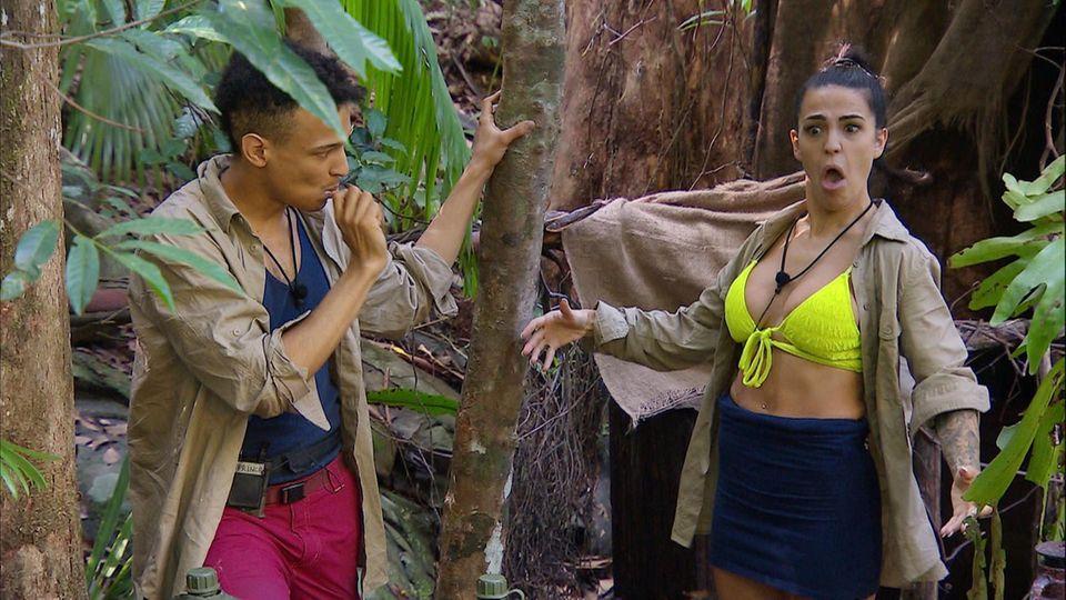 Dschungelcamp: Prince Damien und Elena Miras