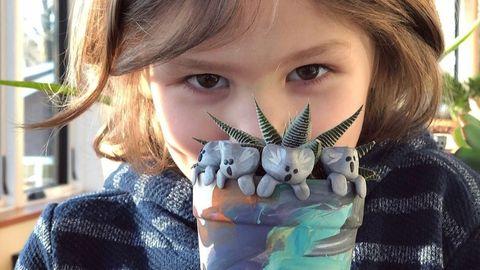 Der sechsjährige Owen sammelt Geld für bedrohte Tiere in Australien – und bastelt dafür Mini-Koalas.