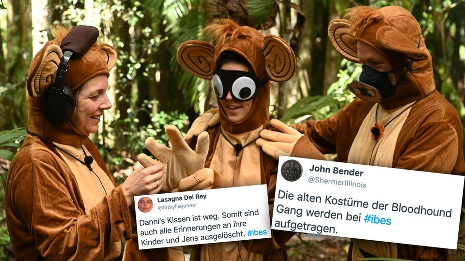 Dschungelcamp, Tag 12: Das Netz freut sich über Affenkostüme.