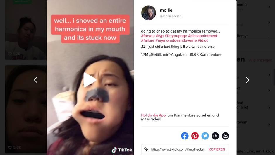 Mollie hat eine Mundharmonika quer im Mund