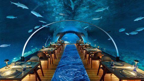 Malediven:Hurawalhi Island Resort  Es geht zwar nicht ganz zum Mittelpunkt der Erde, aber immerhin knapp 6 Meter unter den Meeresspiegel: In dieser Tiefe speist man im piekfeinen Hurawalhi-Resort auf den Malediven. Auf den Tellern werden erlesenste Köstlichkeiten des Meeres serviert, während sich rings um den mitten ins Korallenriff gebauten Glastunnel quicklebendige Meeresbewohner in allen Farben, Größen und Formen tummeln. Und wenn es oben Nacht wird, fühlt man sich vollends wie in einer geheimnisvollen Unterwasserwelt direkt aus einem Abenteuer von Jules Verne.