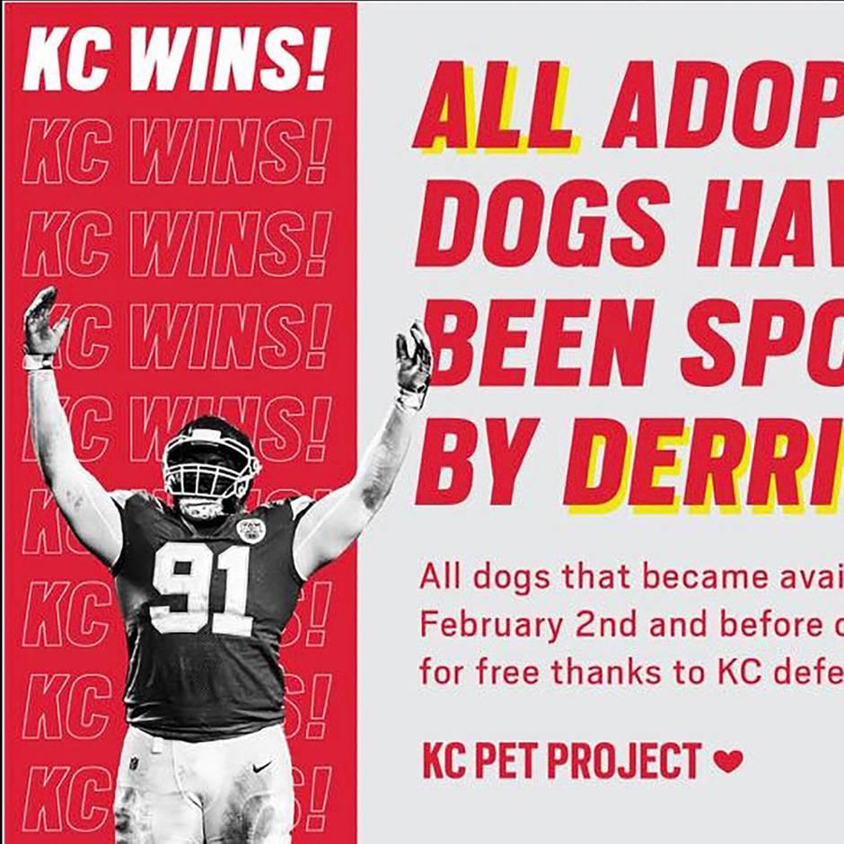 Kansas City Chiefs: Große Geste: Superbowl-Gewinner zahlt Gebühren für alle Hunde eines Tierheims