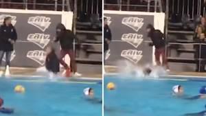 Bei einem Wasserballspiel in Griechenland schubst ein Zuschauer den Schiedsrichter ins Becken.
