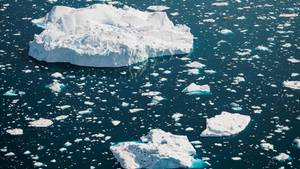 Treibendes Eis im Wasser vor Grönland
