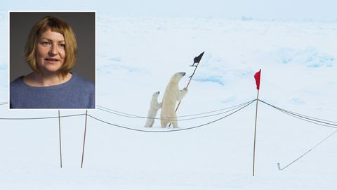 """Codename """"Schatzgräber"""": Russland erforscht geheime Nazi-Wetterstation in der Arktis"""