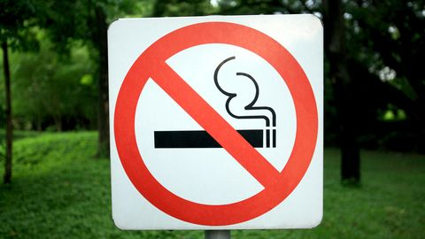 Ein Rauchverbotszeichen steht in einer Parkanlage