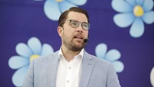 Der Parteichef der Schwedendemokraten Jimmie Åkesson