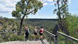 Aussichtspunkt über den McKenzie Falls