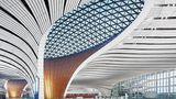 Ein Flughafenterminal, das wie eine riesige weiße Baumkrone aussieht