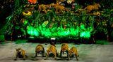 Wildkatzen statt Tänzerinnen: An diesem Abend hat die SambaschuleVila Isabel ihren Auftritt.