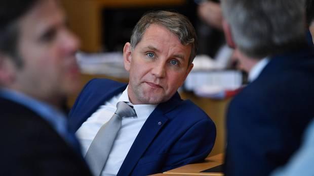 Björn Höcke, Fraktions- und Landeschef der AfD in Thüringen
