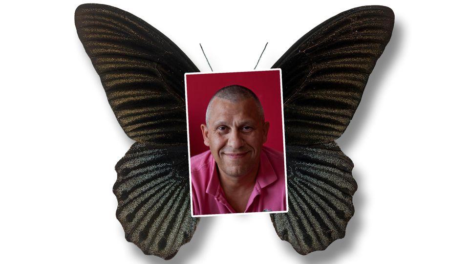 Ein Bild von Martin Kok mit Schmetterlingsflügeln