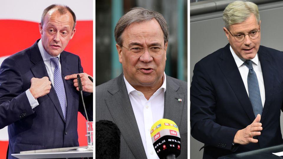 Laschet, Merz und Röttgen : Hengstparade - eine Polemik gegen das neue Dreigestirn der CDU