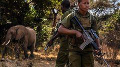 Patrouille im Elefantenschutzgebiet