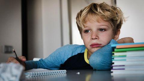 Schulsystem: Taugt mein Kind zum Akademiker? Über den Leistungsdruck an Grundschulen
