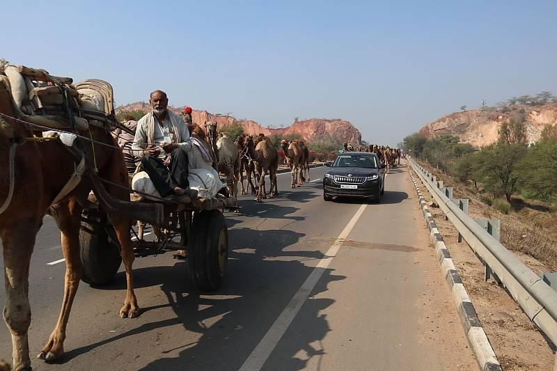 Der Verkehr in Indien läuft nach anderen Regeln ab