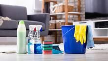 Im Frühjahr putzen viele Menschen ihre Wohnung