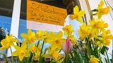 Nur noch indirekter Kundenkontakt: Dieses Schild hängt im Schaufenster eines Geschäfts im Chiemgau. Der Blumenladen setzt auf Selbstbedienung und das Vertrauen der Käufer.