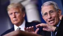 Anthony Fauci auf einer Pressekonferenz zur Coronakrise mit US-Präsident Donald Trumpin Washington