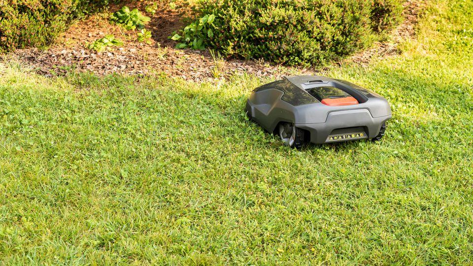 Ein verborgener Draht muss die Rasenfläche einzäunen.