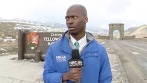 NBC-Reporter Deion Broxton flieht im Yellowstone Nationalpark vor einer Herde Bisons.