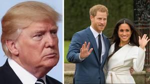 Trump erklärt: Harry und Meghan sollen selbst für ihren Schutz zahlen