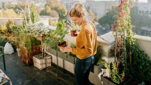 Balkon gestalten: Wir zeigen dir, wie du jeden Balkon optimal einrichten kannst