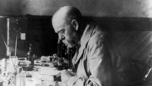 Robert Koch im Labor