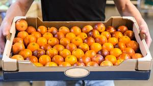 Ein Mann trägt eine Stiege Orangen