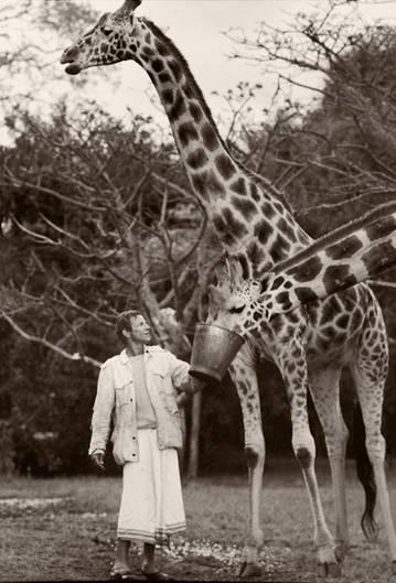 Peter Beard im Vorgarten seiner Ranch, er füttert Giraffen