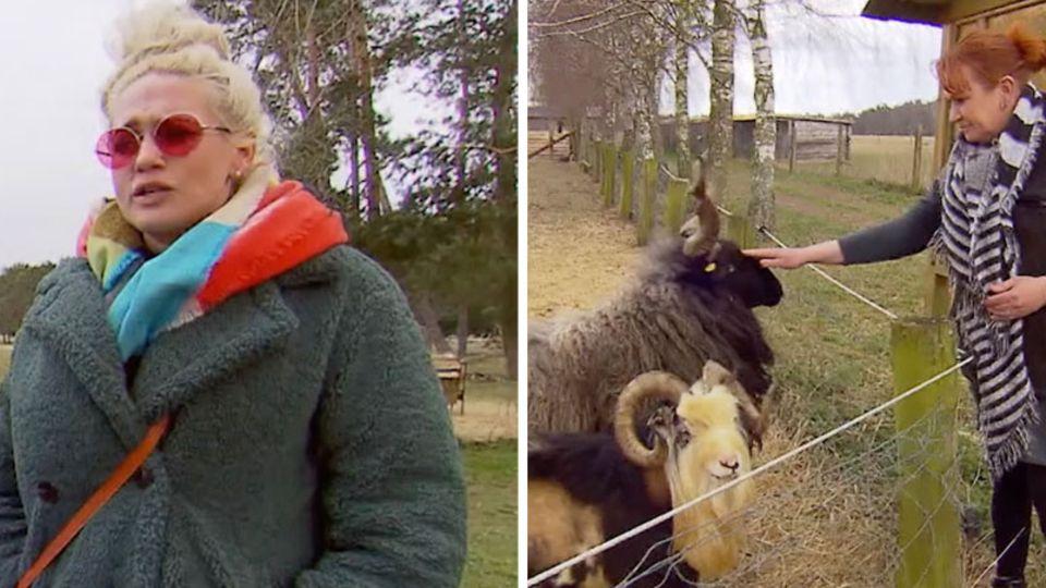 Sarah Knappik setzt sich in der Corona-Krise für Tiere in Not ein