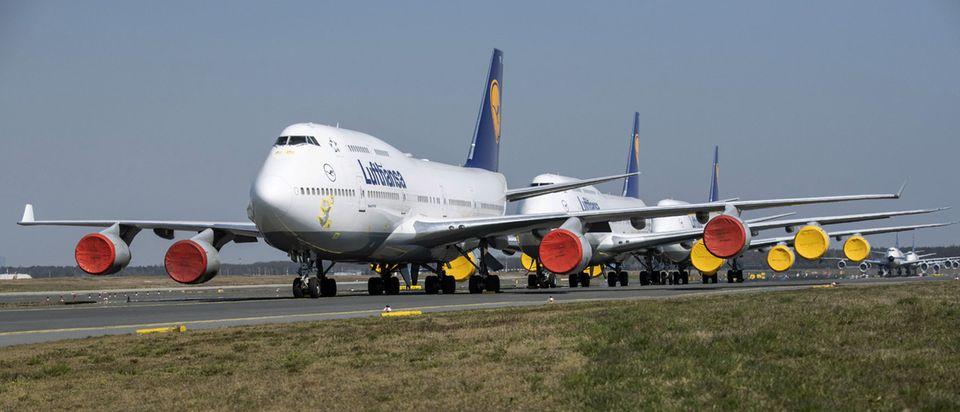 Stehen mit Triebwerkabdeckungenam Boden: Mehrere Boeing 747 der Lufthansa am Flughafen Frankfurt