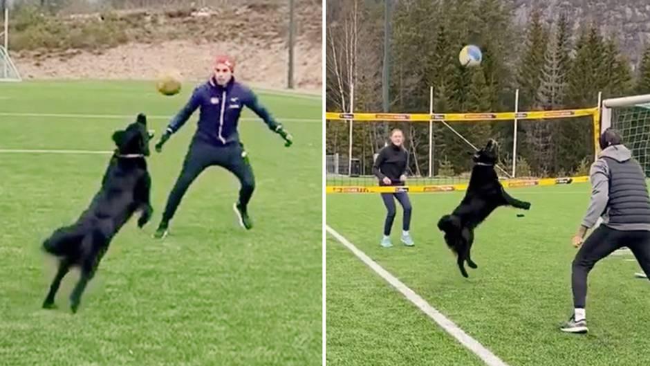 Kiara ist das Maskottchen der norwegischen Volleyball-Nationalmannschaft.