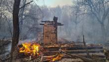 Waldbrand in der radioaktiv belasteten Sperrzone um das Kernkraftwerk Tschernobyl